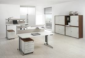 assmann ludwig office. Black Bedroom Furniture Sets. Home Design Ideas