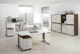 Assmann Ludwig Office